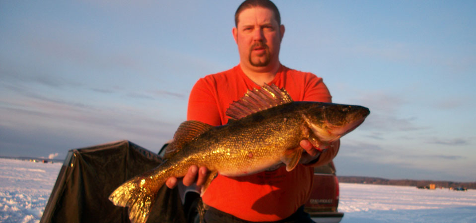 Large walleye taken through the ice