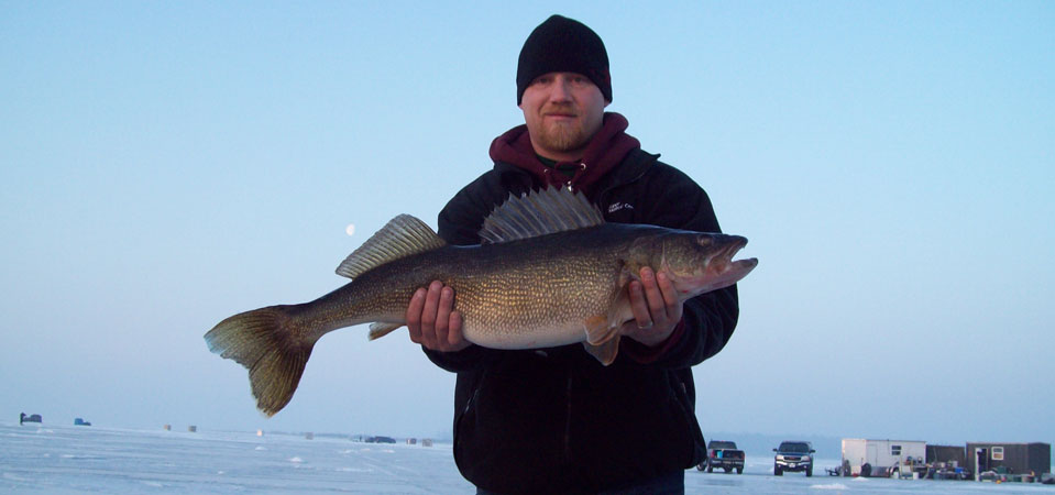 Trophy walleye taken through the ice