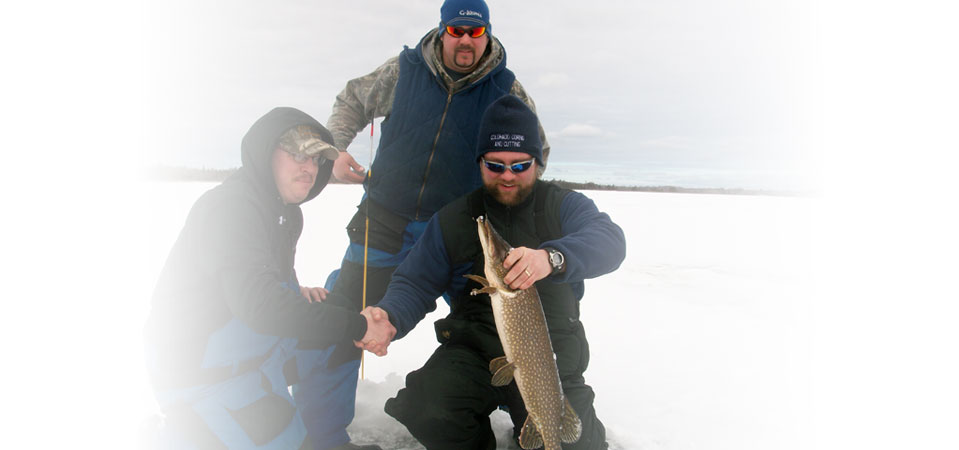 Northern pike taken through the ice
